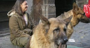 Koriste pse za prosjačenje petface