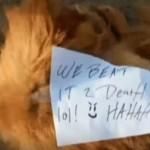 "Pretukli psa do smrti i ostavili poruku: ""Ha ha pretukli smo ga""!"