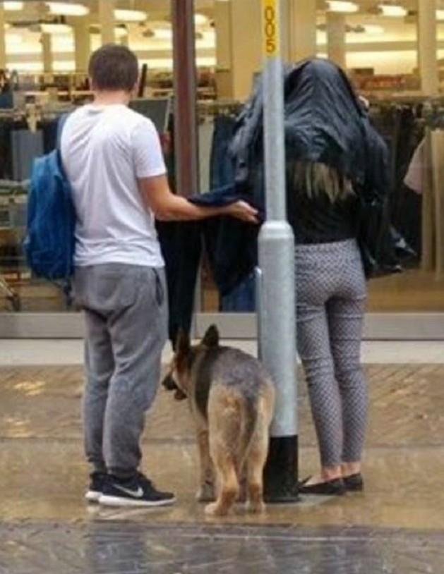 zaštitio psa od kiše petface