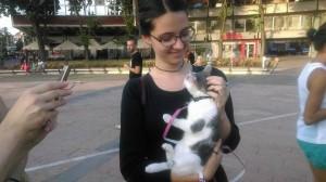 """KRALJEVO: Ovako su ljubitelji životinja podržali odluku grada da zatvori Udruženje """"Spaske""""!"""