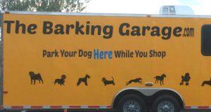 čuva pse petface