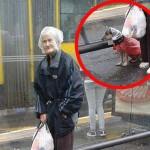 FOTOGRAFIJA KOJA KRUŽI INTERNETOM: Baka iz Beograda od pljuska zaštitila i svog psa!