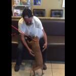 Stiv je beskućnik, ali ni za šta na svetu ne bi napustio svog psa Šeli!
