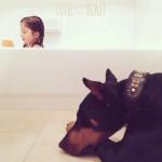 LEPOTICA I ZVER: devojčica i pas ulepšaće vam dan