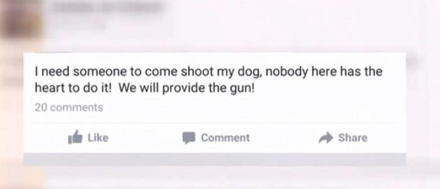 žena zatražila od svojih Facebook prijatelja da joj ubiju psa petface