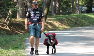 Mark i Pajo hodaju za njihov život petface