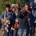 FOTOGRAFIJA KOJA JE SLOMILA SRCA: Migranti iz Sirije sa psom stigli u Srbiju! (FOTO)