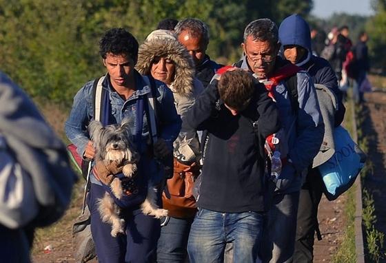 Migranti iz Sirije sa psom petface