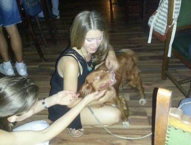 svirka za napuštene pse petface