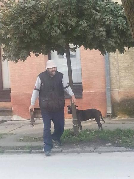 ostavio psa vezanog za drvo petface
