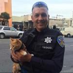Mačka sprečila samoubistvo vlasnika!