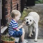 NOVI DOKAZI: Psi mogu da prepoznaju lažljivce!