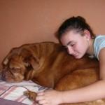 DIVNE VESTI: Udomljen pas koji je bio živ zakopan!