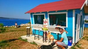 kafić za pse petface