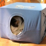 URADI SAM: Napravite sami kućicu za mačke! (VIDEO)