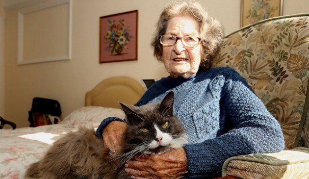 mace utiču na zdravlje starijih osoba petface