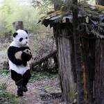 """VRLO EMOTIVNO: Ljudi obučeni u pande, """"glume"""" majku malenoj pandi! (FOTO)"""