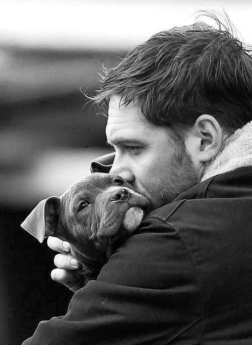 pas idealan kućni ljubimac petface
