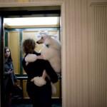 BEOGRAD: Kazna do 75.000 dinara ukoliko uvedete psa ili mačku u lift?!?!