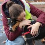 DOKAZANO: Psi pomažu ljudima sa epilepsijom!
