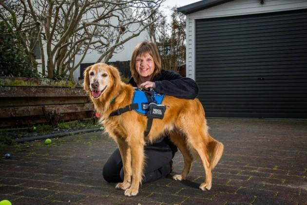 psi pomažu ljudima sa epilepsijom petface