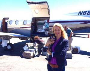 spasavaju pse eutanazije petface5