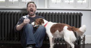 spasio 650 napuštenih pasa petface
