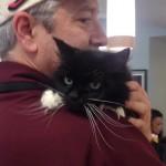 SREĆAN KRAJ: 18 godina stara mačka, koja je ostavljena na ulici, našla novi dom