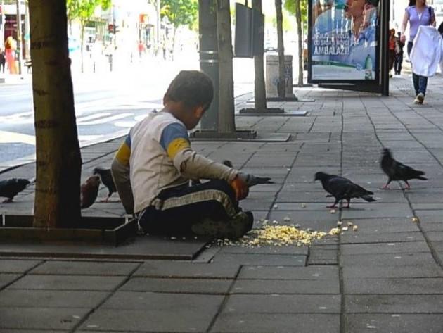 svoj obrok deli sa golubovima petface