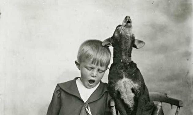 zavisnik o svom psu petface4zavisnik o svom psu petface