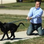 SAVETI: Predstavljamo vam 5 igrica koje će poboljšati kvalitet šetnje sa vašim psom