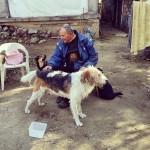 UPOZNAJTE MILANA: Anđeo čuvar napuštenim psima o kojem NIKO NE PRIČA!