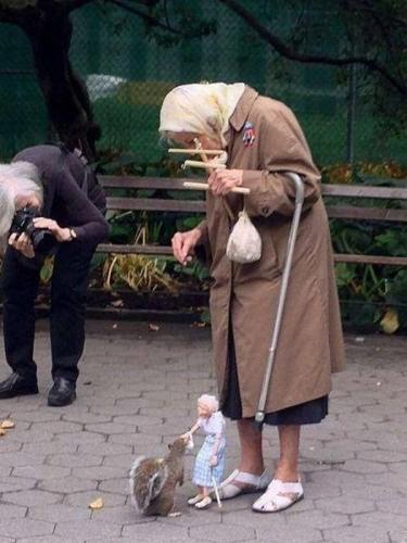 nahranila vevericu petface