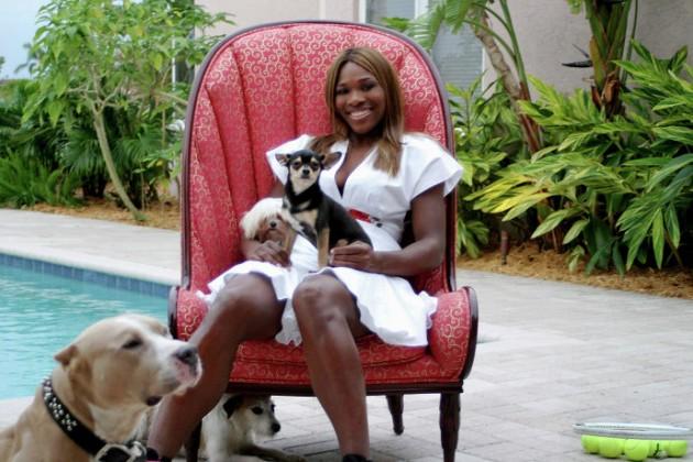Serena Vilijams se oprostila od svoje preminule ljubimice petface