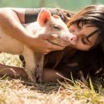 RAJ: U ovom azilu žive sve napuštene životinje – i domaće i kućni ljubimci! (VIDEO)