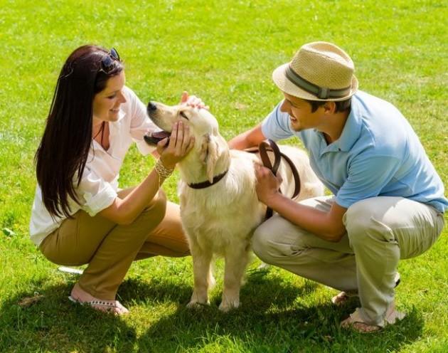 pozitivan efekat ljubimaca na zdravlje ljudi petface