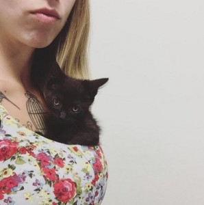 spasavanje mačića petface5