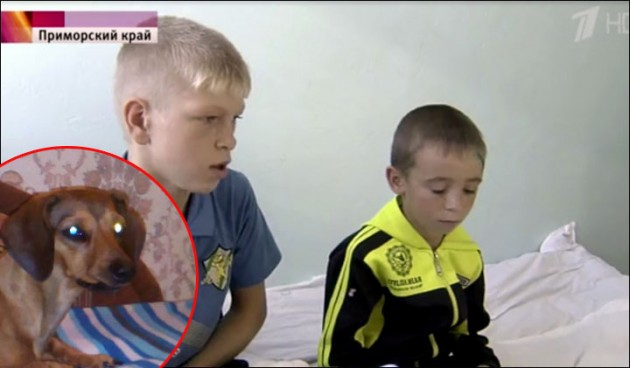 spasio dečake petface