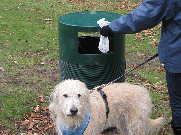 čistače psećeg izmeta petface
