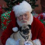 NOVOGODIŠNJA BAJKA ZA LJUBIMCE: Deda Mraz sa irvasima jezdi ka Kragujevcu