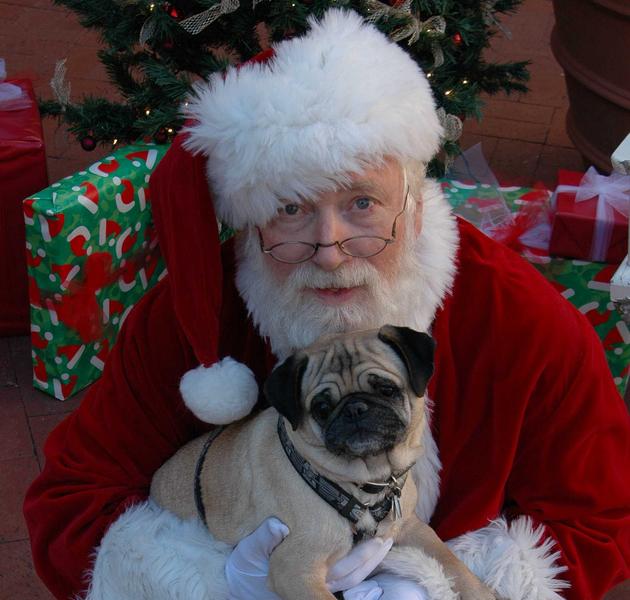 Deda Mraz petface