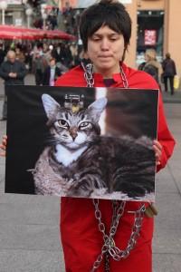 Međunarodni dan prava životinja petface5