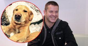 Vlado Georgiev pronašao psa petface