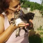 BARAJEVO: Rada je dobila otkaz na poslu, a onda je otvorila Prihvatilište za preko 70 pasa i mačaka!