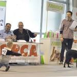 Trainer&Biogance delili su nagrade mešancima petface.22
