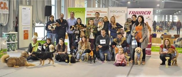 Trainer&Biogance delili su nagrade mešancima petface