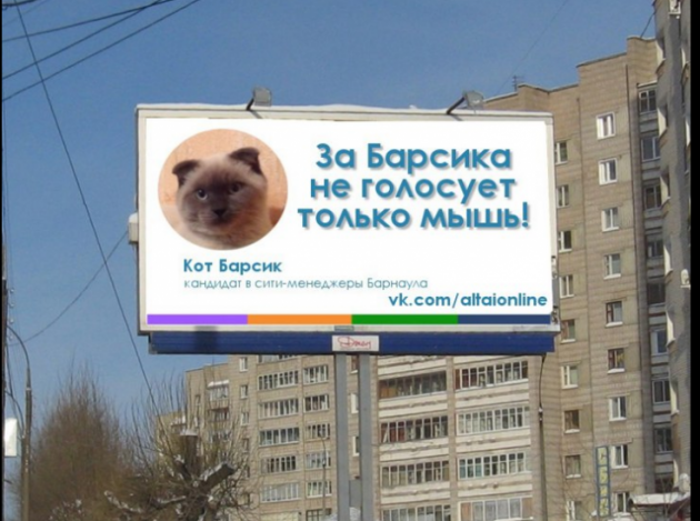 mačak gradonačelnik petface