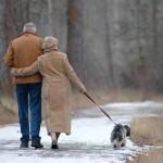 5 novogodišnjih odluka u kojima vam mogu pomoći ljubimci!