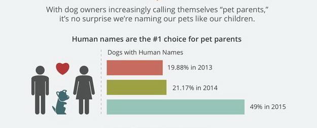 najpopularnija imena pasa petface