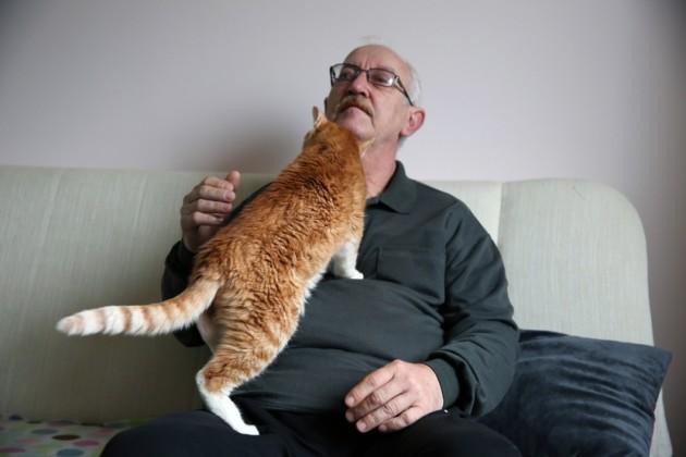 najstarija mačka na svetu petface
